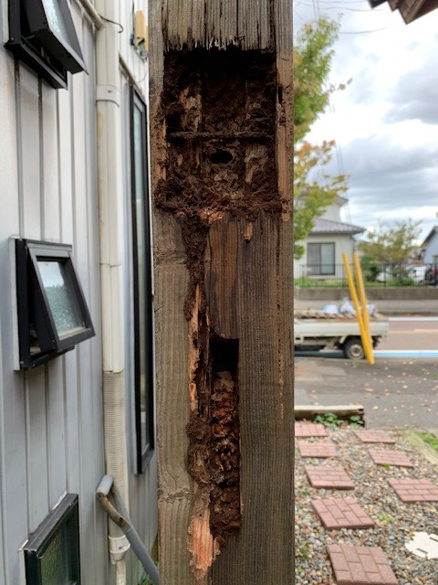 木塀崩壊撤去処分