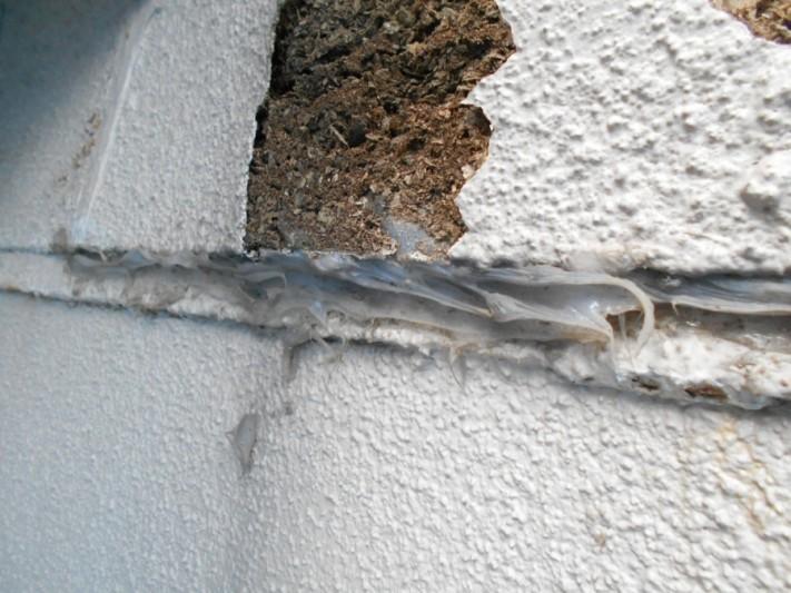 新潟市西区 外壁の問題