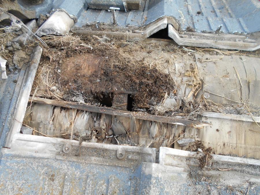 セメント瓦から雨漏れ調査