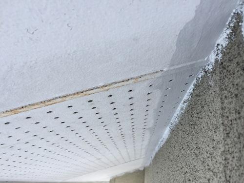 軒天塗装 端 白