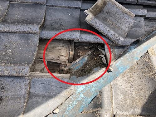 新潟市東区 雨漏り 下葺き材 塗れ