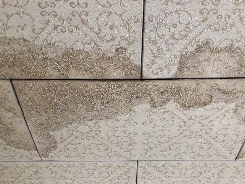 新潟県燕市 天井 染み