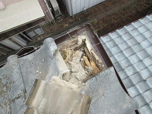 鬼瓦の下 スズメの巣