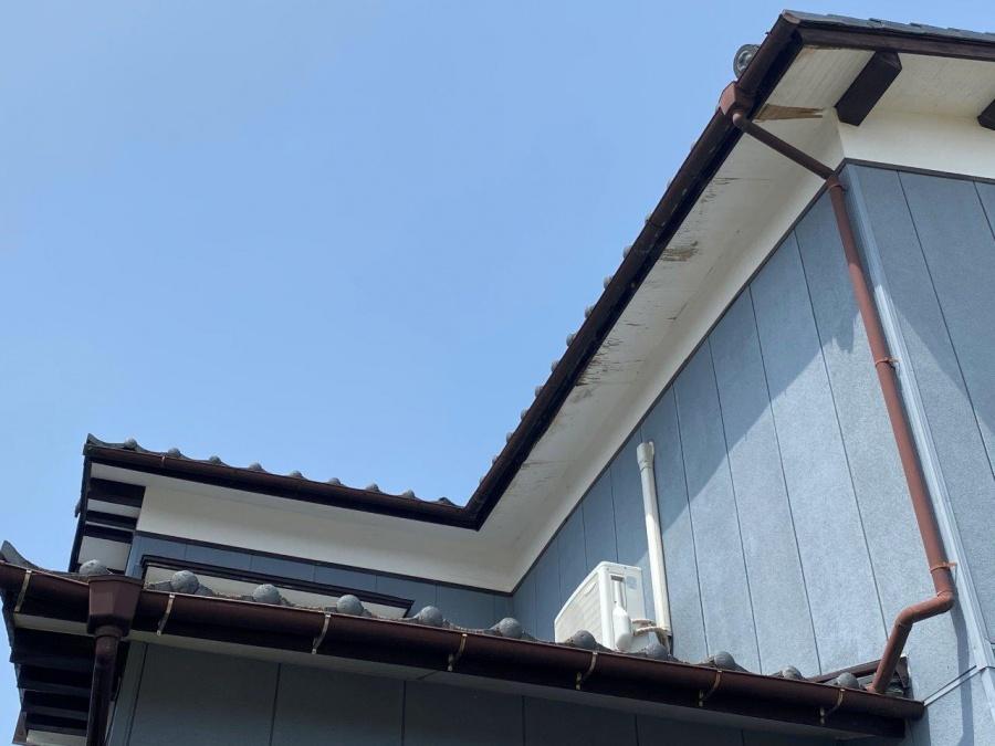 新潟市東区にて風害によって軒樋の破損・軒天の剥がれで現地調査を行いました
