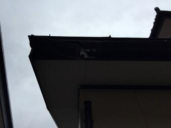 新潟市秋葉区 雨樋落下 軒樋 現地確認