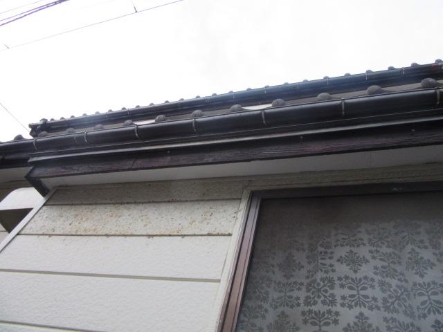 新潟市北区にて下屋の軒樋に草が生えていることから現地調査してきました