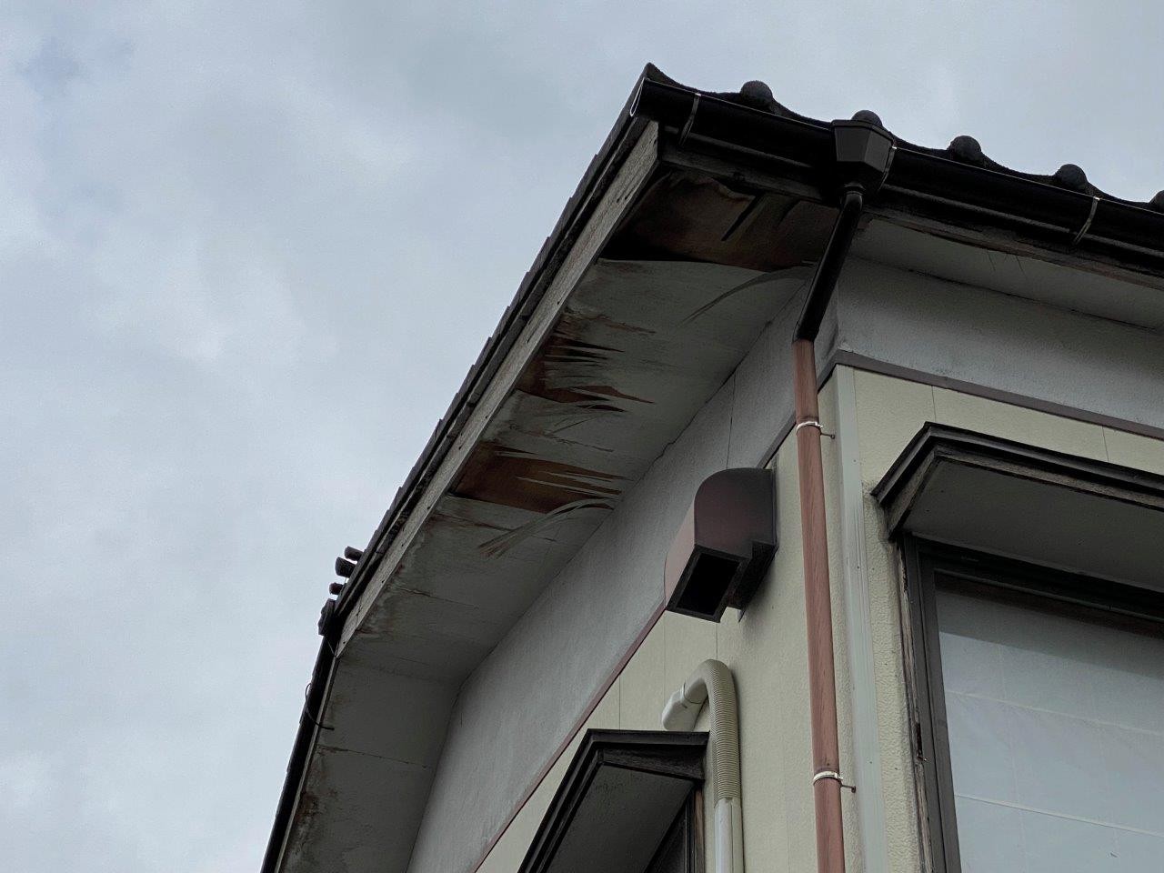 新潟市西区にて軒天の剥がれで現地調査を行いました