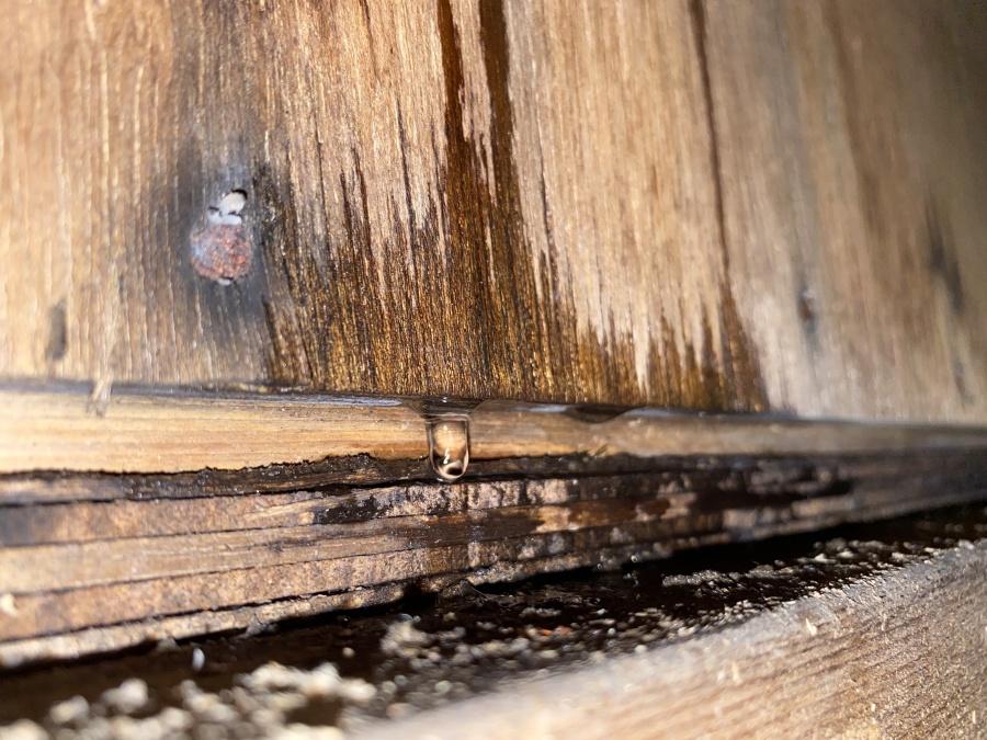 五泉市にて雨漏れで散水検査