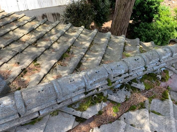 コケや藻などが発生しやすい屋根