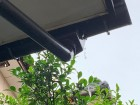 軒樋集水器水漏れ工事