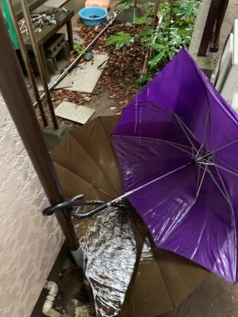 雨樋 ゴミ詰まり