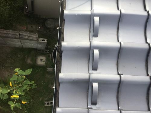 雨樋 清掃 集水器
