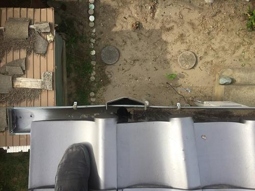 雨樋 清掃 網無集水器
