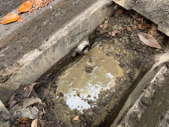 側溝詰まりによって雨樋まで詰まり