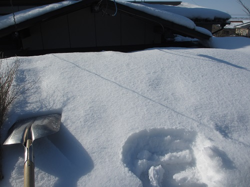 屋根雪下ろし スコップ 竹ぼうき