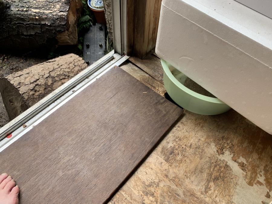 雨漏り修繕工事の現地調査