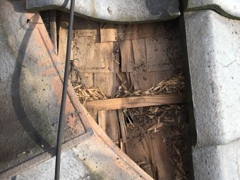 屋根下地 雨漏り