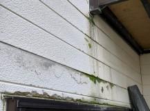 窯業系サイディング劣化雨漏れ