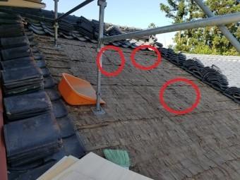 瓦剥ぐ 解体 雨漏り箇所