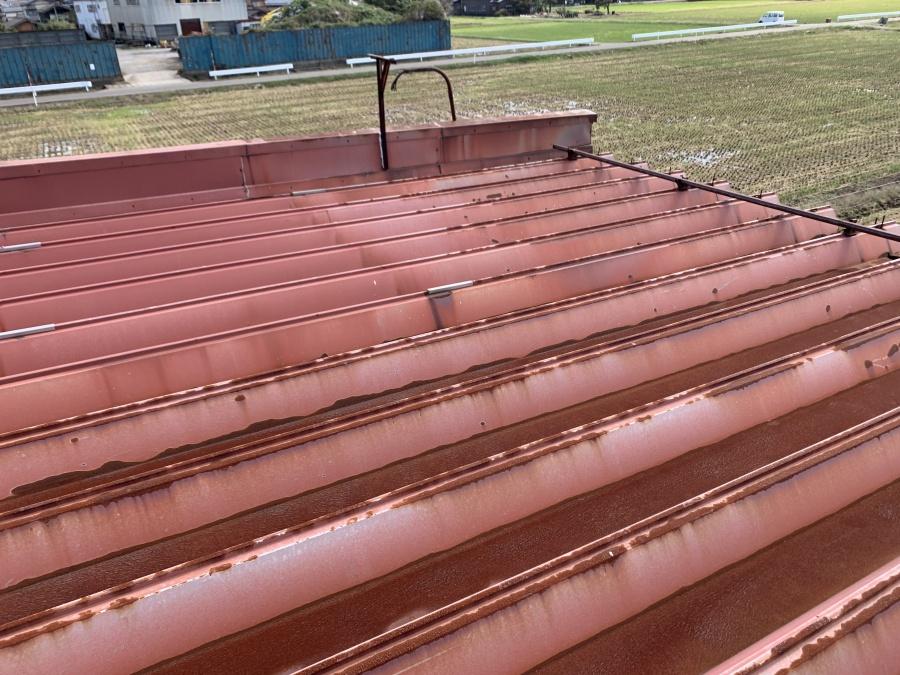 折半屋根修繕工事の現地調査
