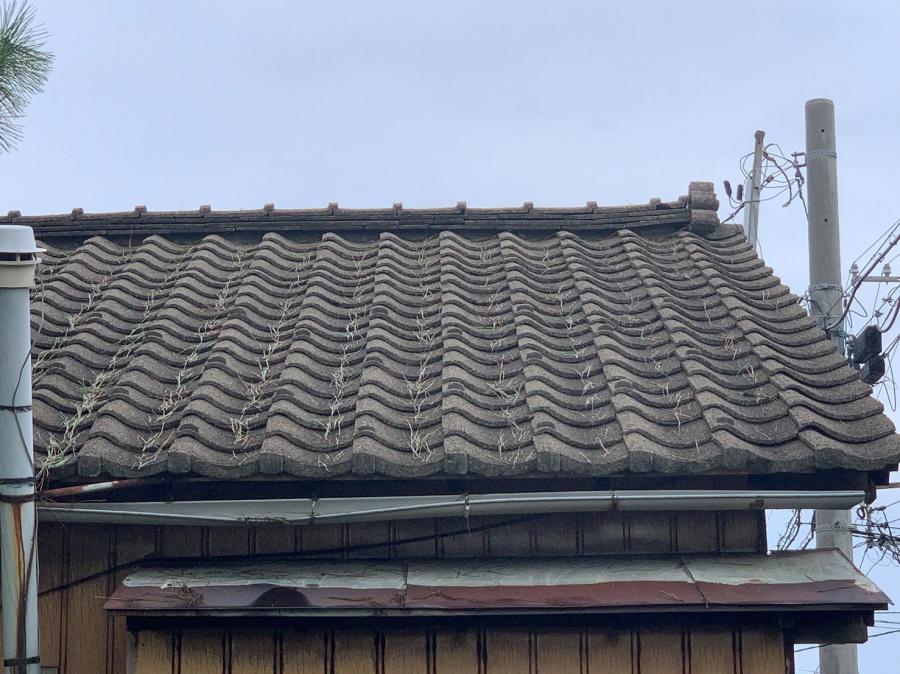 新潟市東区にて老朽化したセメント瓦の雨漏れ被害を修理したS様の感想アンケート
