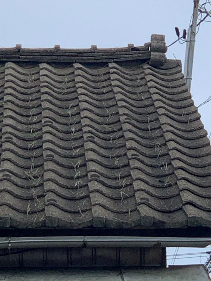 台所天井より雨漏れ