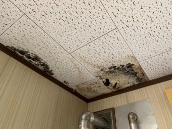 セメント瓦屋根で雨漏れ発生