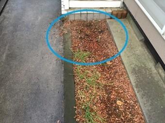 雨樋 水跳ね 雨たれ 花壇