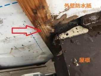 外壁解体 胴縁 雨漏り原因