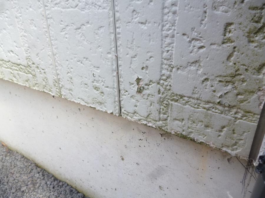 外壁のコケ・藻・カビの落とし方について