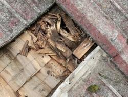雨漏れ修繕工事