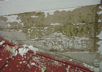 塗膜が剥がれ露出した外壁写真